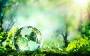 Право на здоровье. Здоровье — это сила земли, сила природы, и каждый рождённый имеет право на эту силу, на источник жизненной силы