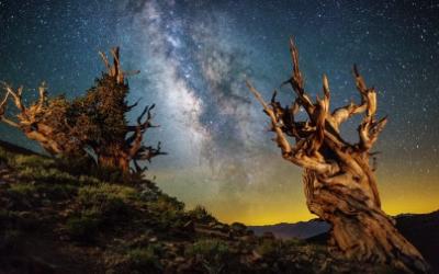 7 базовый курс. Боги и силы.Изучение мифов, технология погружения сознания в различные пантеоны и религии, путешествие по иным мирам