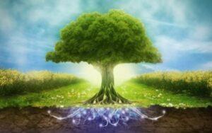 Семинары Сила Рода, древние родовое знание, тайна, сокрытая в генах, накопленная поколениями предков. Структура рода, иерархия и потоки