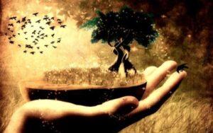 Духовное развитие и смысл жизни. В чём смысл жизни? Зачем человек родился, зачем вообще всё существует, какой именно опыт нужно обретать