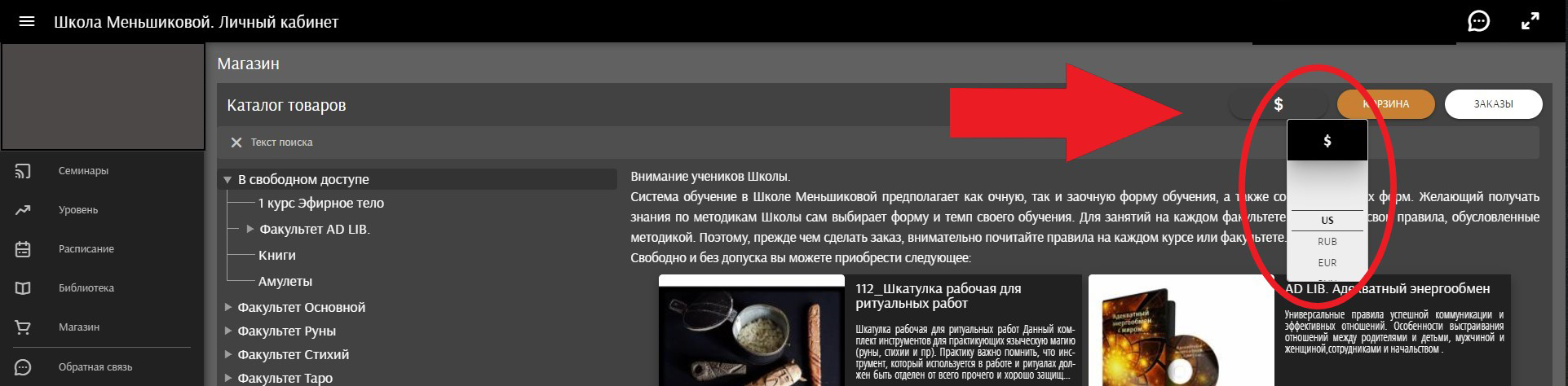 выбор валюты, меньшикова, Ксения Меньшикова, сайт школы Меньшиковой