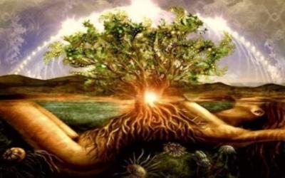 Смысл жизни и ее результаты. В чём смысл жизни. Цель жизни человека. Что такое душа. Сознание это.Смысл бытия. Предназначение. Для чего жить