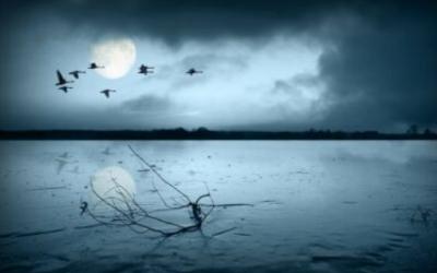 20—23 сентября Мабон. Осеннее равноденствие. Овсень. Языческий праздник. время испытаний. засыпает стихия вода. кельтский праздник
