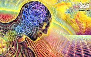Как образуются стихийные пространства и границы между ними. Пространства делаются сознаниями людей. Всему в социуме есть аналог в природе