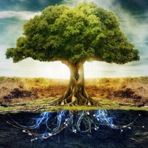Изменение судьбы как программа собственного сознания, как дерево текущей реальности. Для этого нужно разработать прообраз и систему инъекций,