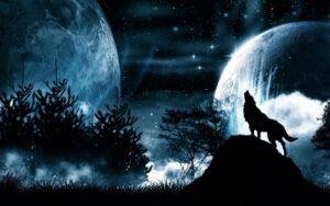 Черные псы во сне - посланники, спутники богини Гекаты,символы стражи, хранителей проходов между мирами, Что значит черная собака во сне