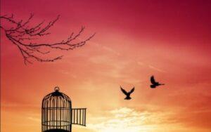 Обретение нового опыта. Разговор о свободе и традиции.Куда направить свободное время? Как правильно потратить время? Новый опыт