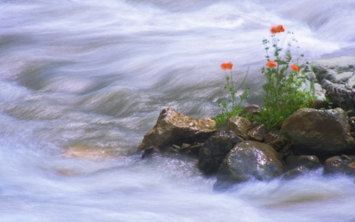 Остара просыпается вода, весеннее равноденствие