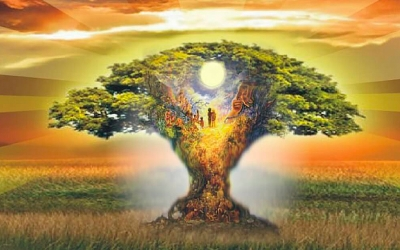 Рождение души одного человека и смерть другого в одном роду, матричная структура рода, проблемы рода - ограничение в правах по деторождению
