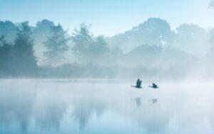 Вода Воздух, Стихийное пространство Вода Воздух, Шторм. Туман. Поверхностное натяжение воды, ролевые сообщества, магические ордена, участники медитаций