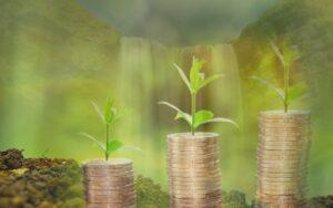 Право на деньги: как заработать, научиться получать деньги - некую степень свободы, Как зарабатываются права для того, чтобы иметь много денег