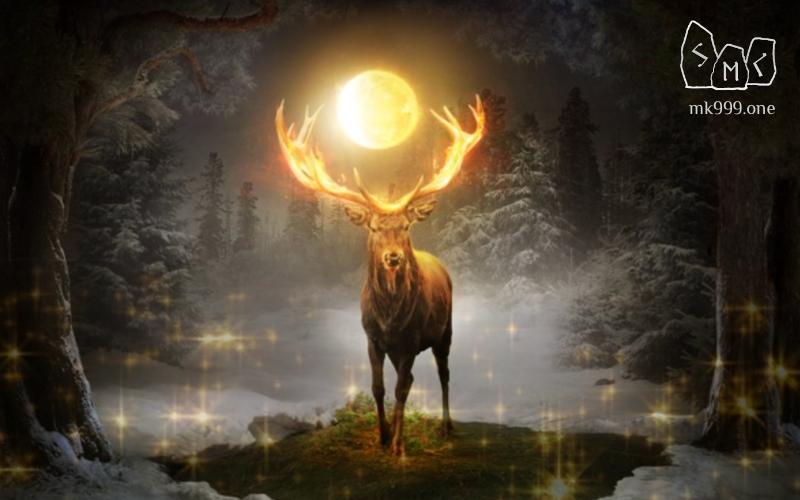 Приглашение на Мистерию ведьм - Самайн 2021. Стихия Земля засыпает и завеса между темным миром мертвых и миром людей поднимается